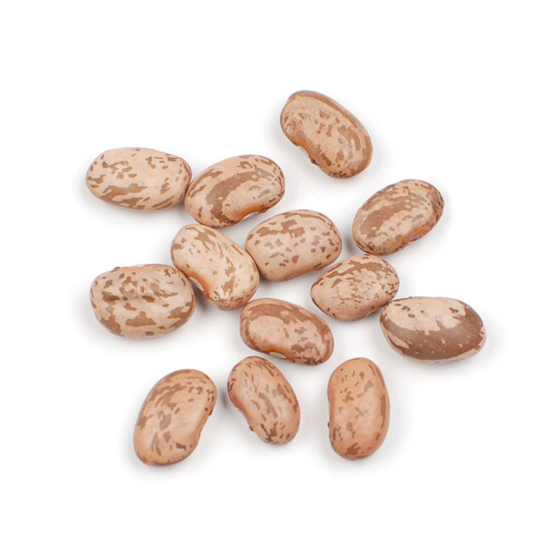 Image result for pinto beans