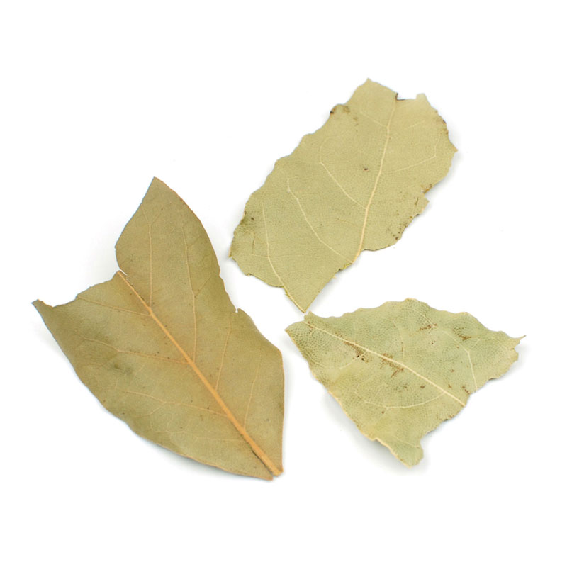 SEMI SELECT BAY LEAVES