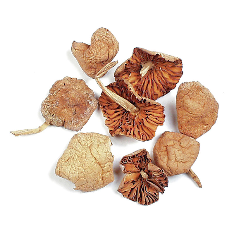 DRIED MOUSSERON MUSHROOMS