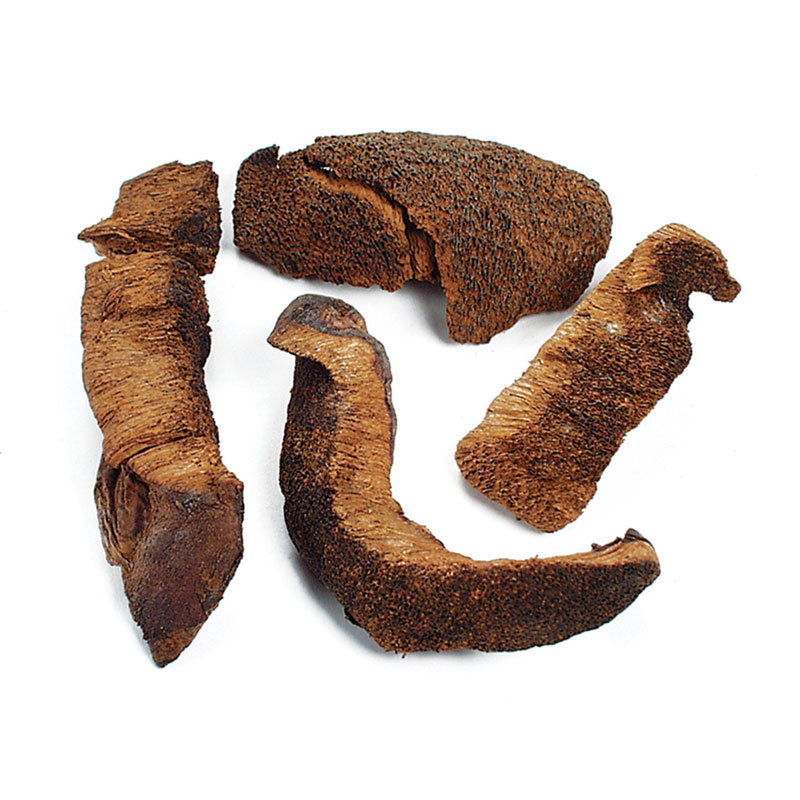 DRIED PREMIUM BOLETE MUSHROOMS