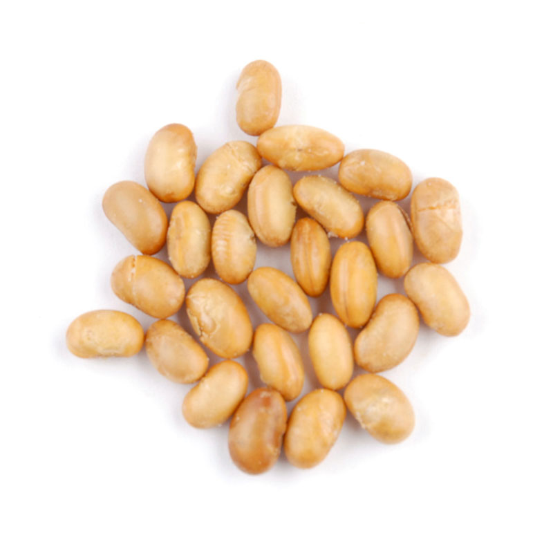 ROASTED SALTED SOY NUTS*